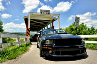 Mountain Mustang Club